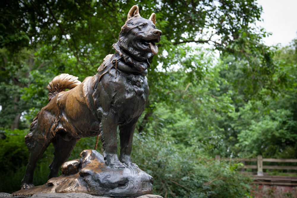 The statue of Balto