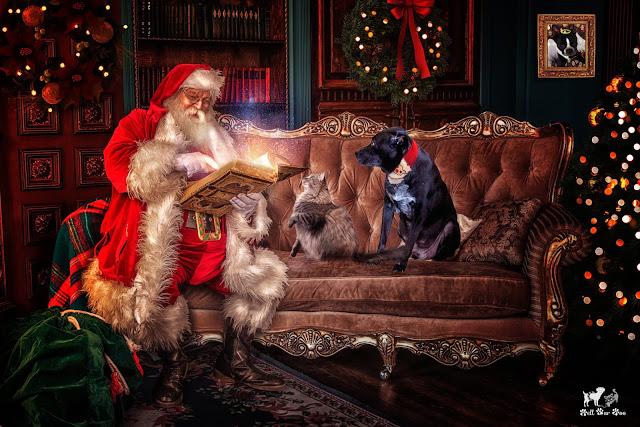 Story Time Wif Santa (©Jenny Bell @ Bell Fur Zoo)