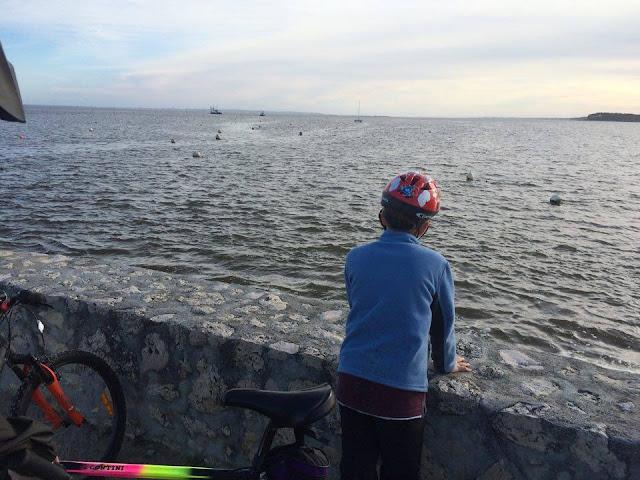 Fotos de Paseos en bici por la Bahia de Arcachon | caravaneros.com