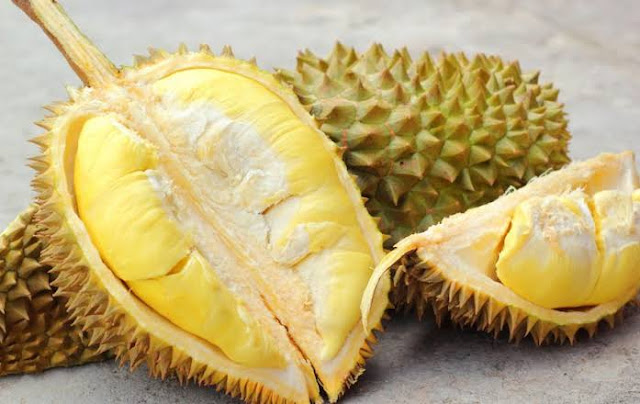 Disinilah Supplier Jual Durian Montong Denpasar, Bali Terpercaya