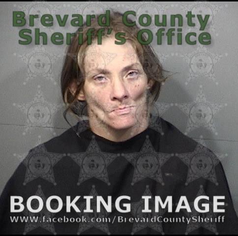 Brevard County Mugshots August 3, 2019