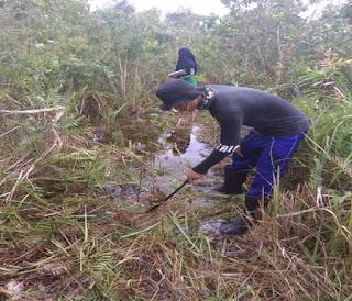 Rehabilitasi hutan dan lahan merupakan bagian dari sistem pengelolaan hutan dan lahan, yang dilokasikan pada kerangka daerah aliran sungai Rehabilitasi, Hutan, Lahan, pemulihan lahan, rehabilitasi hutan yang efektif, rehabilitasi hutan adalah pdf, sistem tehabilitasi hutan.