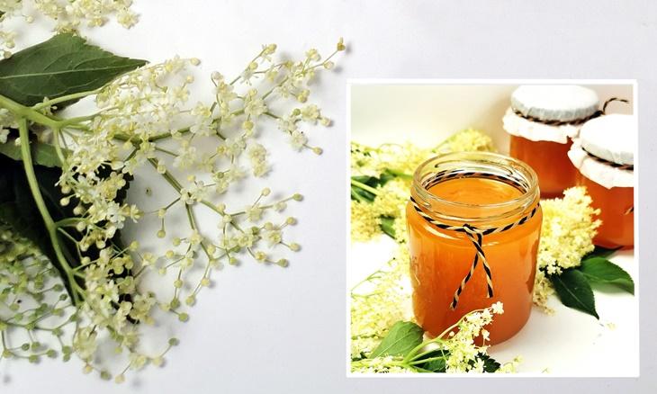 Holunderblüten und Holunderblütengelee im Glas