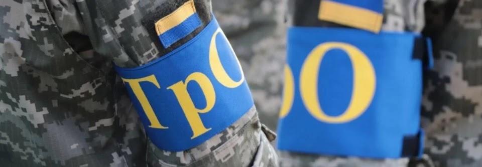 Експерти Верховної Ради висловили зауваження до законопроєкту про територіальну оборону