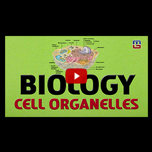 Biology Cell Organelles | General Studies | All Competitive Exams