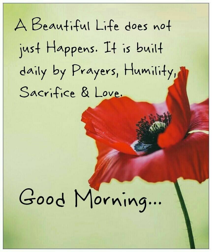 Rise and Shine morning motivation quotes and messages with images