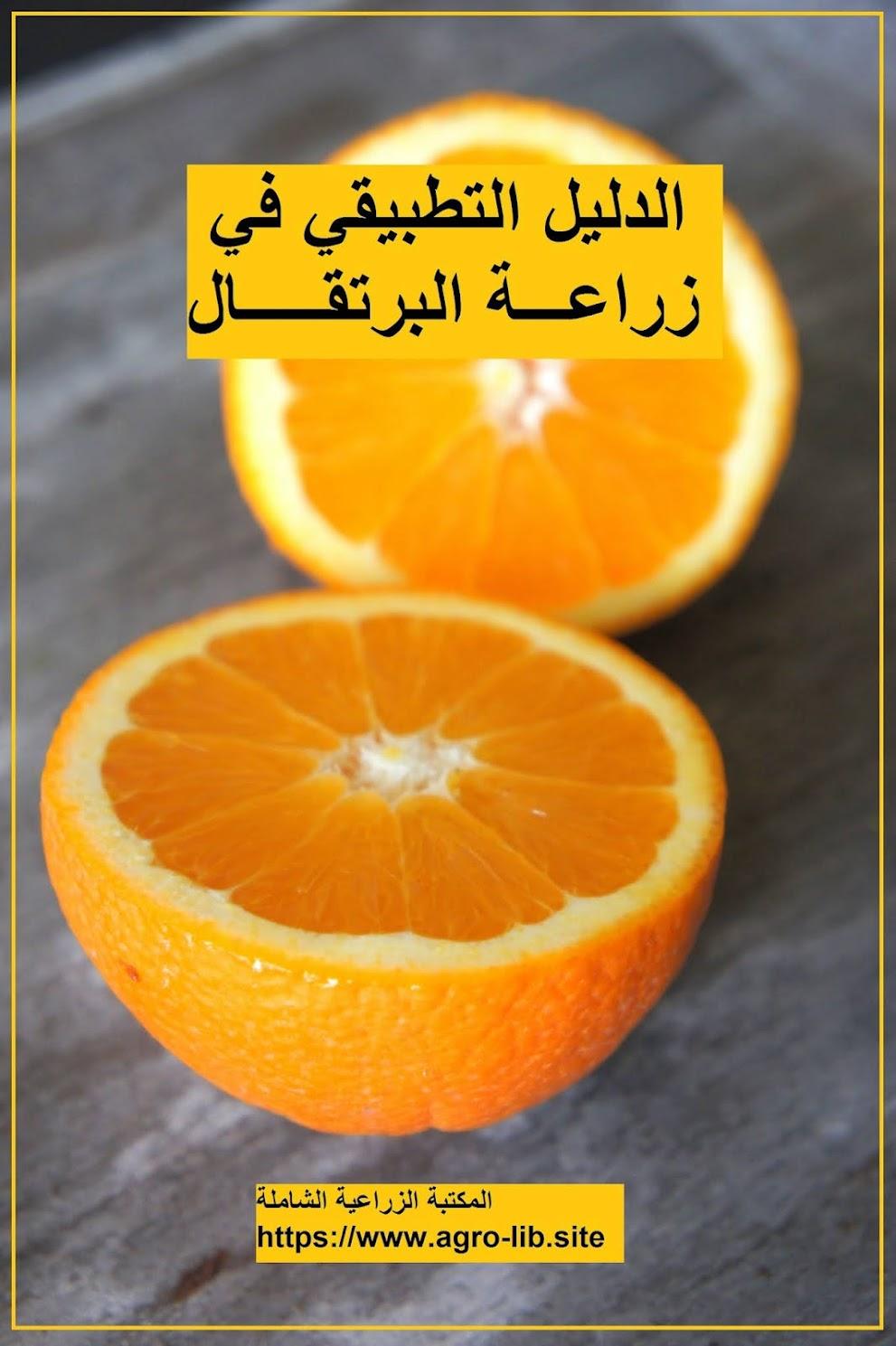 كتاب : الدليل التطبيقي في زراعة البرتقال