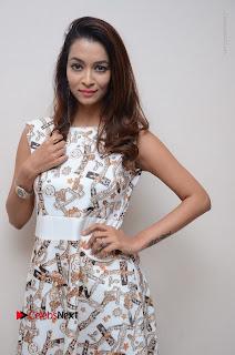 Telugu Actress Reshmi Thakur in Long Dress at Plus One ( 1) Audio Launch  0025.jpg