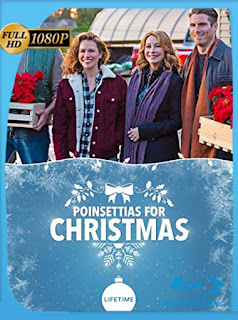 Poinsettias for Christmas (2018) HD [1080p] Latino [GoogleDrive] SilvestreHD