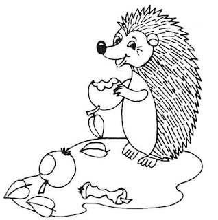 Most Popular Images Hedgehog Eat Three Apples Coloring Pages Print