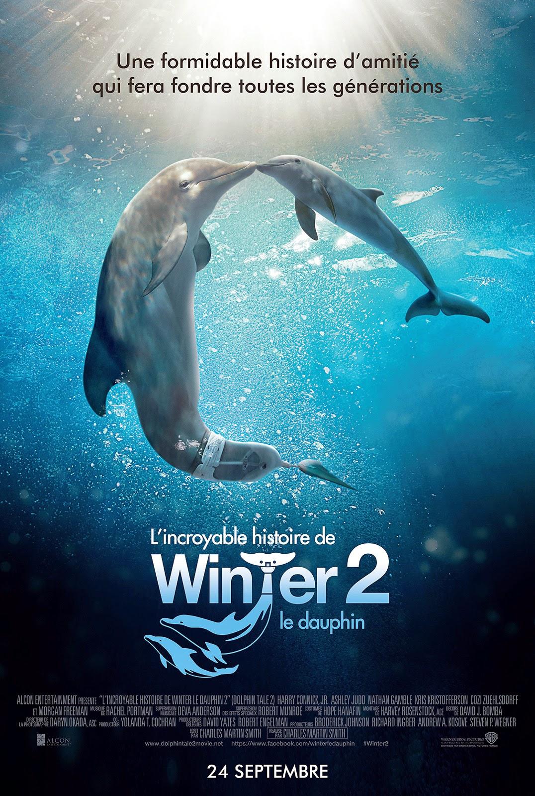 Dolphin Tale 2  มหัศจรรย์โลมาหัวใจนักสู้ 2 [HD][พากย์ไทย]
