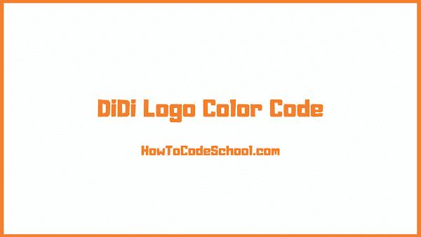 DiDi Logo Color Code