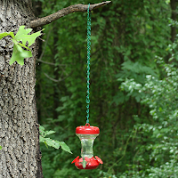 Don't hang the feeder to the tree!