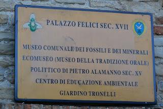 MUSEO-FOSSILI-MONTEFALCONE-APPENNINO