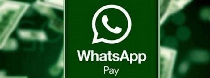 WhatsApp Pay deve começar a funcionar em novembro, diz Cielo