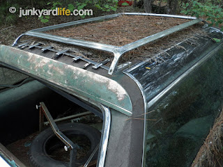Even covered in years pine straw the shiny roof rack gleams.