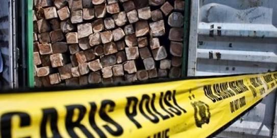 Sementara, Polisi Tetapkan Dua Tersangka Kasus Illegal Logging