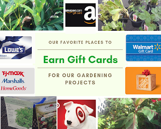 earn gift cards online