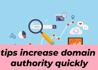 tips increase domain authority quickly
