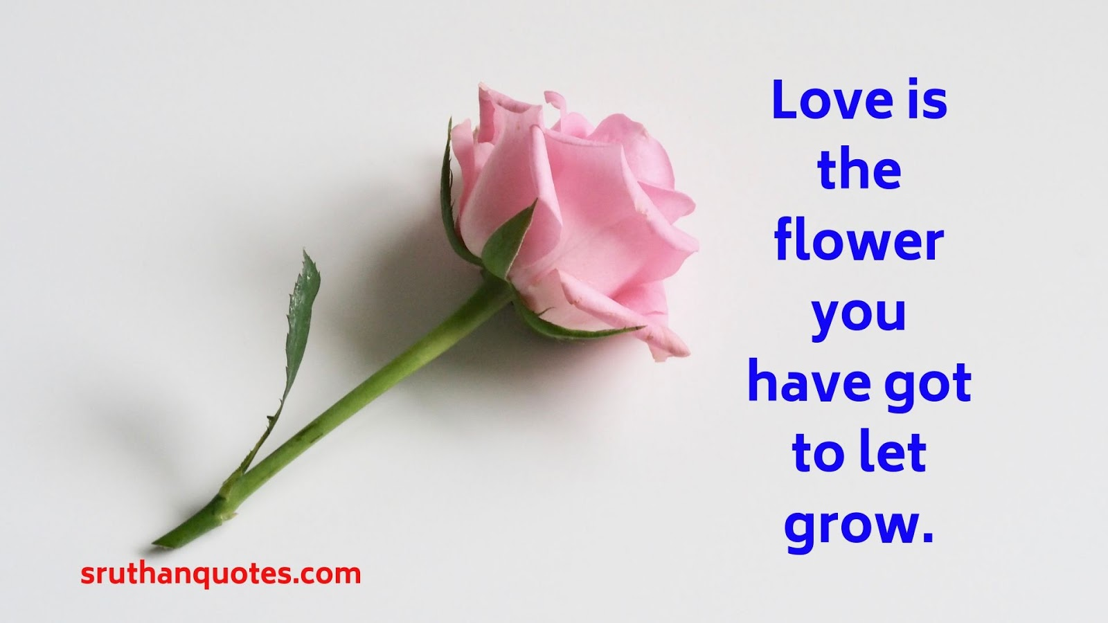 Sruthan Quotes: Flower Quotes