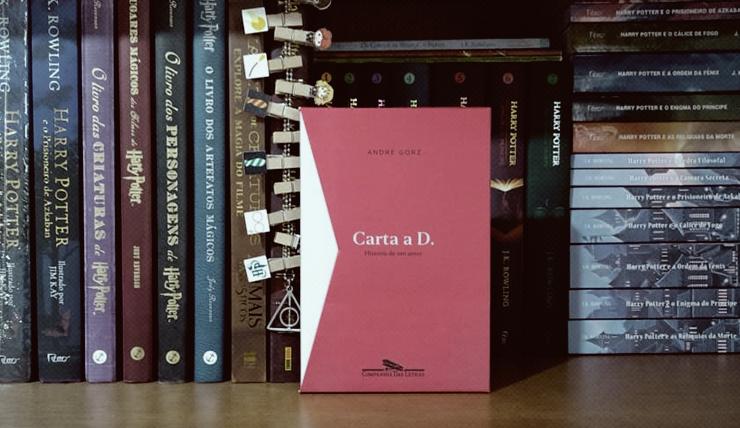Capa do livro Carta a D.