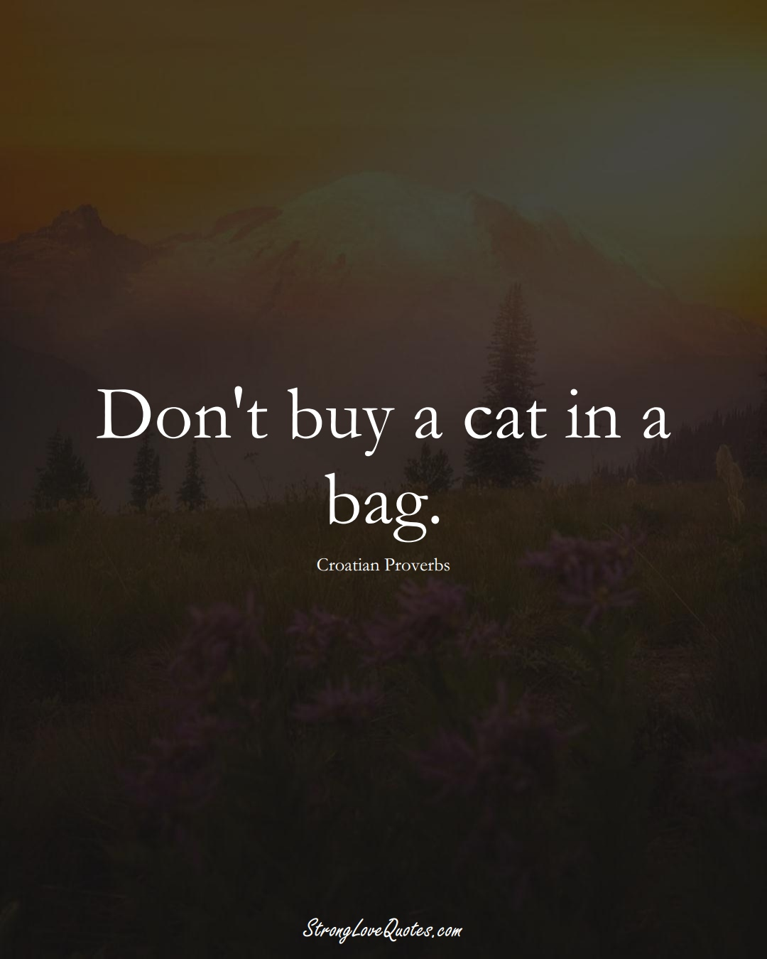Don't buy a cat in a bag. (Croatian Sayings);  #EuropeanSayings