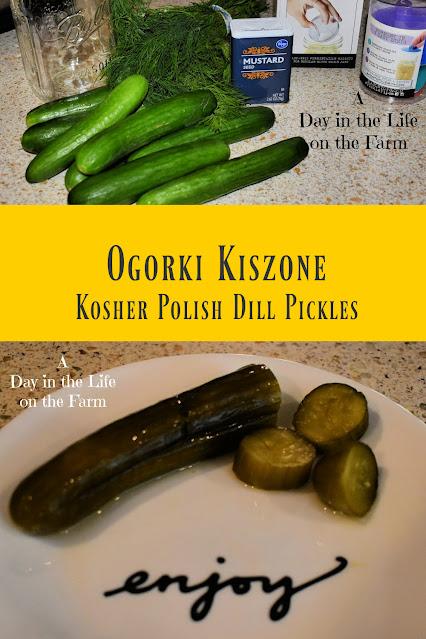 Ogórki Kiszone pin