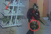 Aksi Maling Curi Janda Bolong di Bone Terekam CCTV
