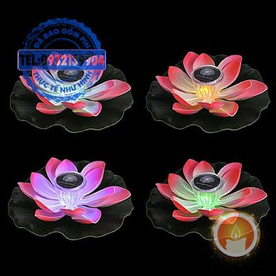 Hoa sen đổi màu thả nổi sạc bằng năng lượng