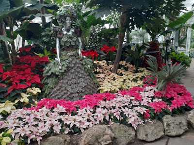 Allan Gardens Conservatory 2019 Winter Flower Show twentytwo by garden muses--not another Toronto gardening blog