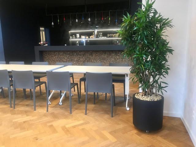 Kantoorbeplanting in Limburg Vlaams-Brabant Antwerpen Brussel. Prijzen op aanvraag
