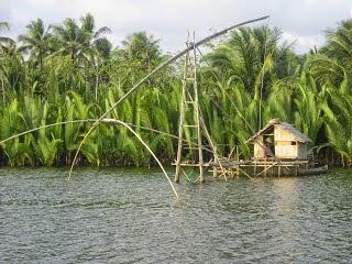 Saung Muara