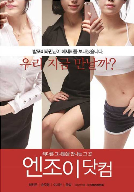 Enjoy The Dot Com (2016) Korean Hot Movie Full HDRip 720p