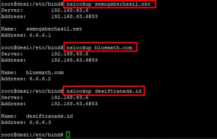 регистрация в домен tj