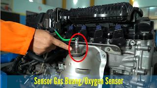 Oxygen Sensor (Sensor Gas buang)