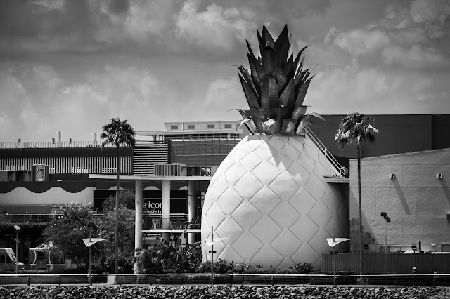 pineapple disney springs