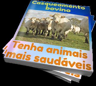 casqueamento bovino-laminite em bovinos tratamento gabarro em bovinos pdf  aprumos dos cascos dos bois manual de podologia bovina nicoletti pdf  pododermatite bovina pdf  pododermatite bovina