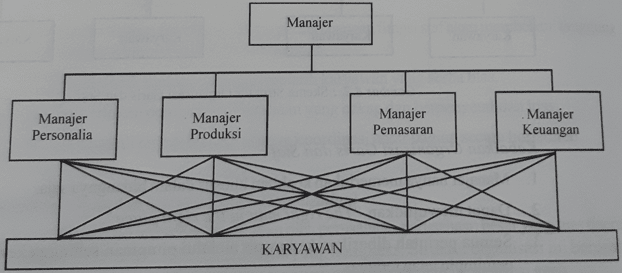 skeam struktur organisasi fungsional