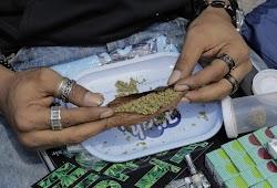 Skunk. Έτσι ονομάζεται το ναρκωτικό το οποίο έχει μπει για τα καλά στα σχολεία. H xρήση ξεκινά από τις ηλικίες των 13 ετών. Στην αυτοψία του...