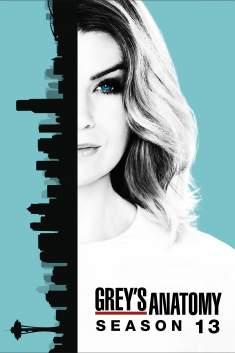 Grey's Anatomy 13ª Temporada