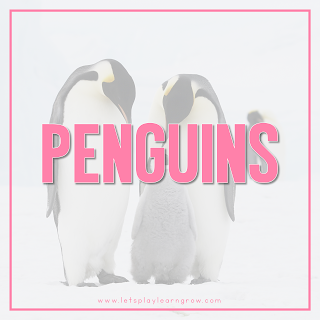 Penguin-Theme