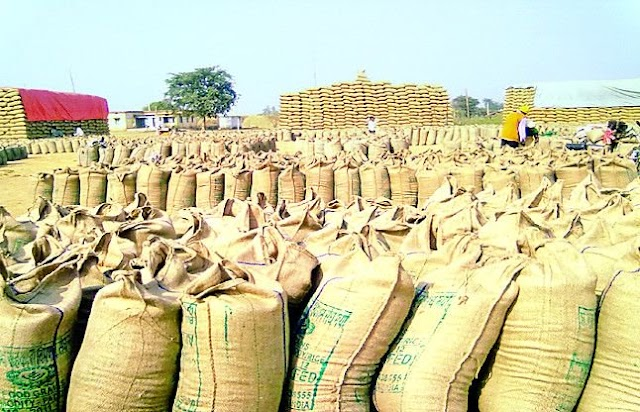 BHATAPARA MANDI-भाटापारा कृषि उपज मंडी आज का भाव जानकारी