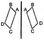 pencerminan opsi C pada soal