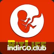 BitLife Life Simulator APK