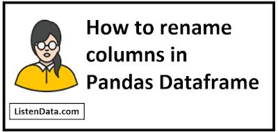 rename columns in Pandas Dataframe