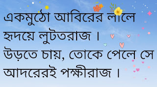 Toke Chai Lyrics Teko