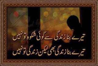 Teray bina zindagi say koi shikwa too nahi - Sad Urdu Poetry 2 line Urdu Poetry, Sad Poetry, Dard Shayari,