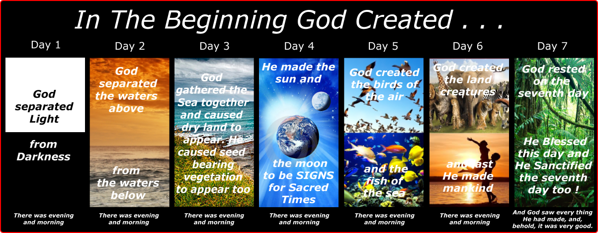 Image result for seven days of creation