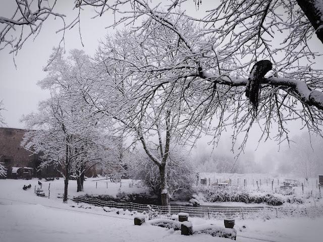 sneeuw op la Charvière