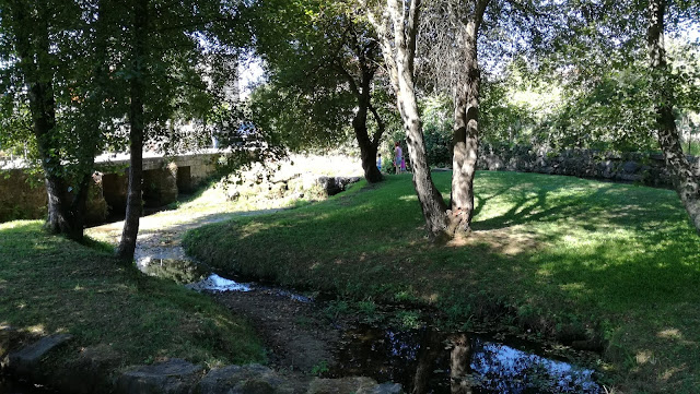 Rio Pela em Santa maria de Airão
